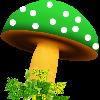 Rosalva68's avatar