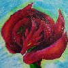 rosedragoness's avatar