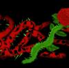 RoseFromCemetery's avatar