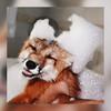 Rosiaa's avatar