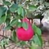 rosspc's avatar