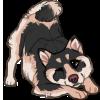 roswellz's avatar