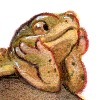 Rowkey's avatar