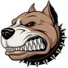 royalmaddog85's avatar