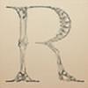 Rozetta's avatar