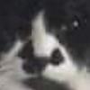 Rozwynne's avatar