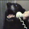 rres's avatar