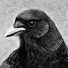 rsg89's avatar