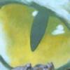 rtuenuik2's avatar