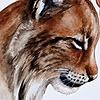 Rubi's avatar