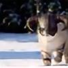 Rufiii's avatar