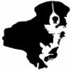 Rupsy-Roo's avatar