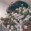 rxhisaishi's avatar