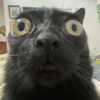 S10Cutie's avatar