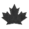 s3Canuck's avatar