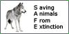 S-A-F-E's avatar