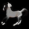 SaandStoorm's avatar