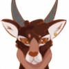 SaireAnimations's avatar