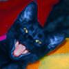 Sakonige's avatar