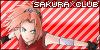 SakuraxClub