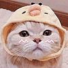 Sakuro24's avatar