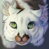salaxia's avatar