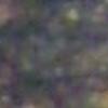 SalopianFunk's avatar