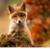 samkate1129's avatar