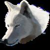 SampennyKennels's avatar