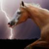 sarah46004's avatar