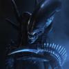 Sarrdonyx's avatar