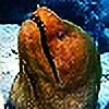 sarya's avatar
