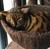 sashasspacepants's avatar