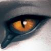 SashaWren's avatar