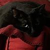 sasmyra-craulnober's avatar