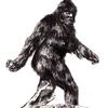 Sasquatch5's avatar