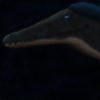 SassyDog1994's avatar