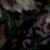 Satah's avatar
