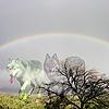 savwlv4al's avatar