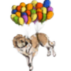 scaramouche2802's avatar
