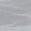 scarietto's avatar