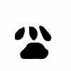 ScarletELS's avatar