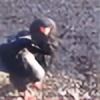 scarlethorn's avatar