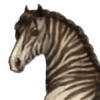 Schn3e's avatar