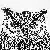 Schneetya's avatar