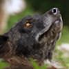 Schwarzwolfgraphy's avatar