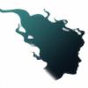 Scinaya's avatar