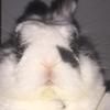 screamZz's avatar
