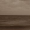 sea-ebony's avatar