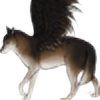 seadragoness's avatar